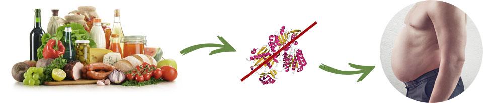 Garcinia Slim - controindicazioni - effetti collaterali