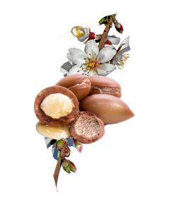 Argan Velvet - come si usa - funziona - composizione - ingredienti
