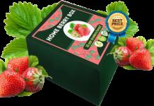 Home Berry Box - recensioni - forum - prezzo - funziona - opinioni - Italia