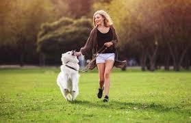 Good Doggie - come si usa - composizione - ingredienti - funziona