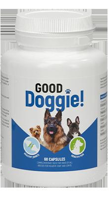 Good Doggie - forum - funziona - recensioni - Italia - prezzo - opinioni